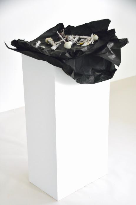 Senza Titolo, 2014. Arbusti con film gomma siliconica Carta velina 100x50x33 cm
